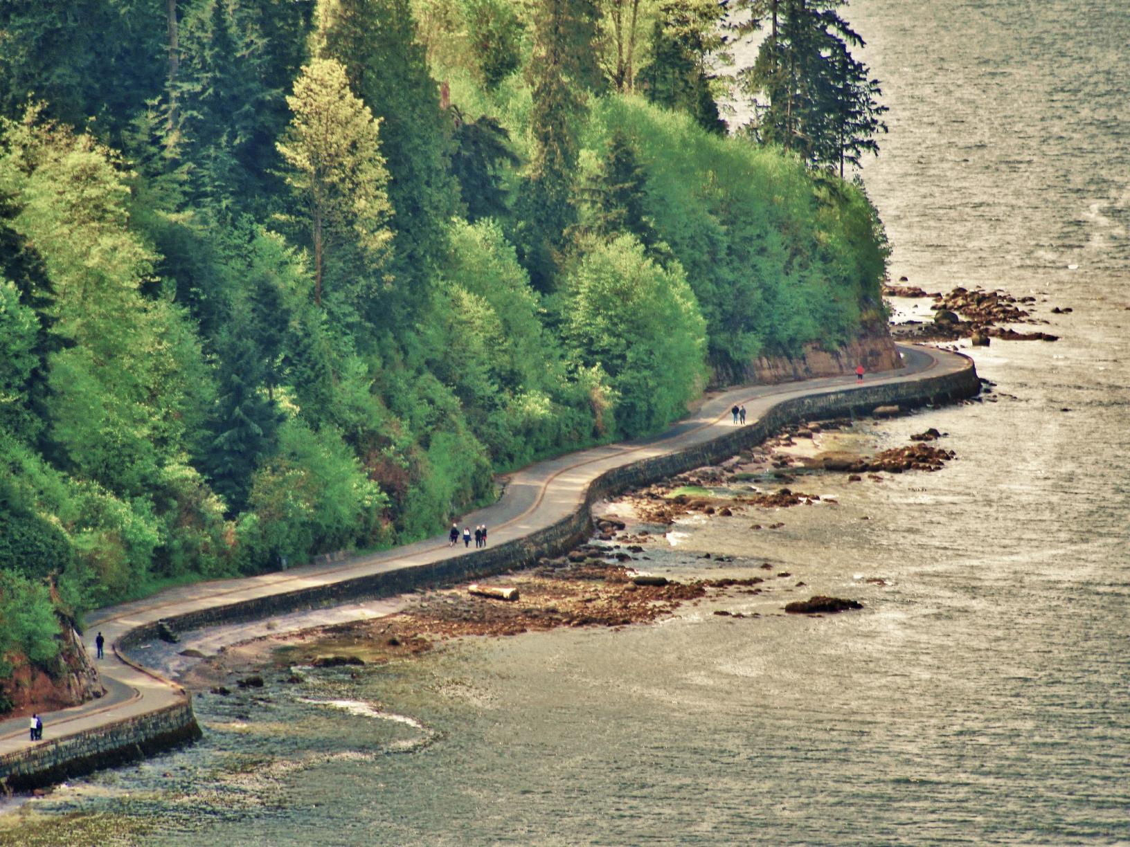 Vancouver Climate Emergency Debate