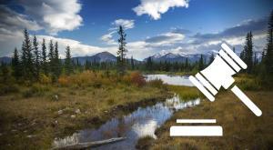 Alberta Foothills (Photo: AutumnSkyPhotography)