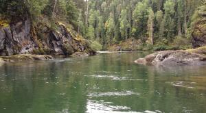 Kispiox River (Photo: Jessica Clogg)