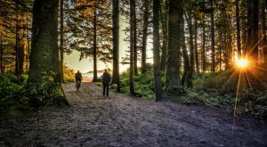 Fixing Canada's Environmental Laws