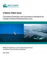 Stress-Free Seas