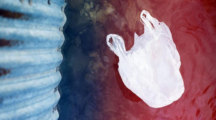 Plastic bag (Photo: Regan Walsh)